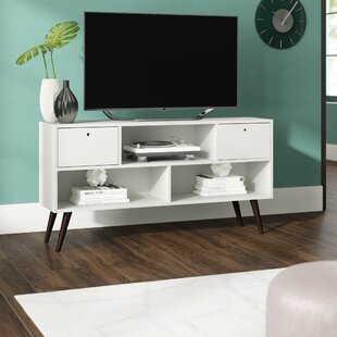 Carneal TV Stand for TVs up to 42