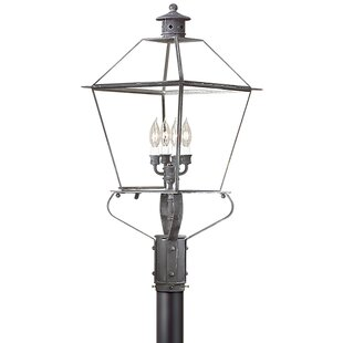 Theodore 4-Light Lantern Head by Darby Home Co