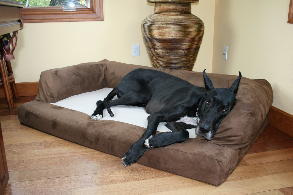 hidden valley products baxter couch bolster dog bed & reviews