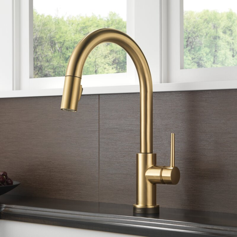 delta trinsic® kitchen single handle pull down standard kitchen