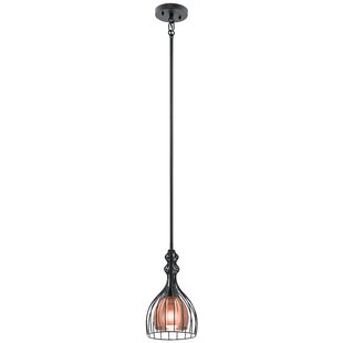 Wrought Studio Bracamonte 1-Light Teardro..