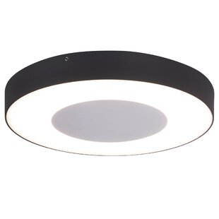 LED Outdoor Ceiling Light Image