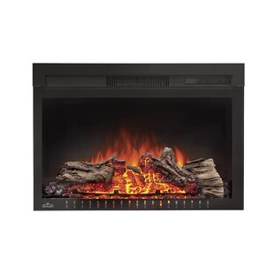 Cinema™ Electric Fireplace Insert by Napoleon