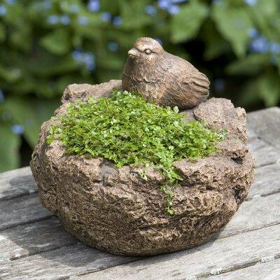 Reales Bird Cast Stone Pot Planter August Grove Color: Brownstone