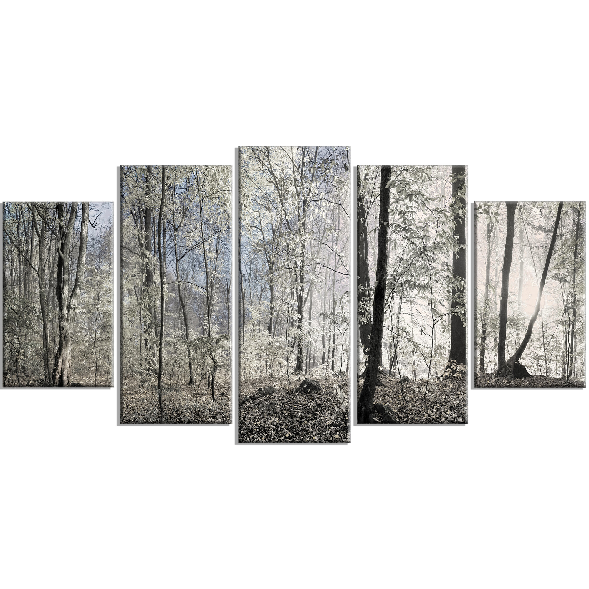 Designart Dark Morning In Forest Panorama Photographic Print Multi Piece Image On Canvas Reviews Wayfair