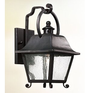 Darby Home Co Oakhur 1-Light Outdoor Wall Lantern