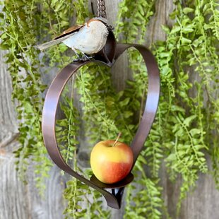 Singletary Decorative Bird Feeder By Brambly Cottage