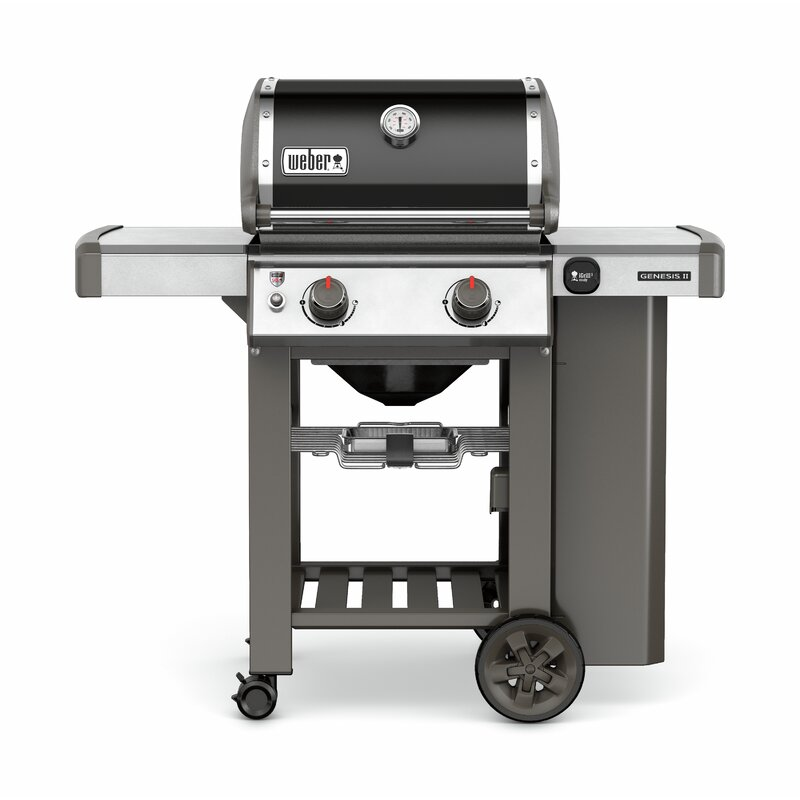 Weber Genesis Ii E 210 2 Burner Propane Gas Grill With Side Shelves