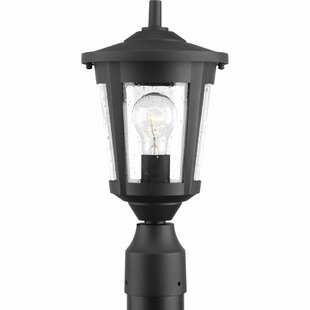 Where buy  Duke 1-Light Metal Lantern Head By Alcott Hill