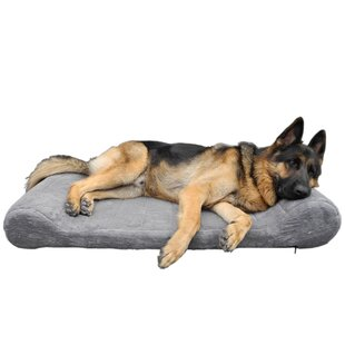 Orthopedic Bolster Dog Bed By Go Pet Club