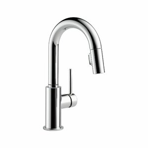 Trinsic® Kitchen Single Handle Pull Down Bar Faucet