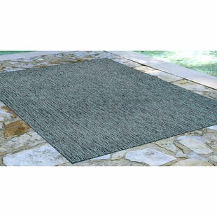 Desantiago Texture Stripe Teal Indoor/Outdoor Area Rug