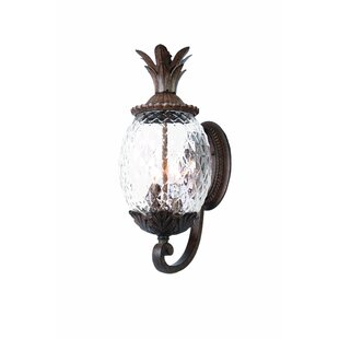 Beachcrest Home Kyra 3-Light Outdoor Sconce