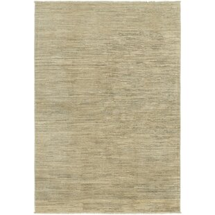 10 X 10 Square Rugs Gray Wayfair