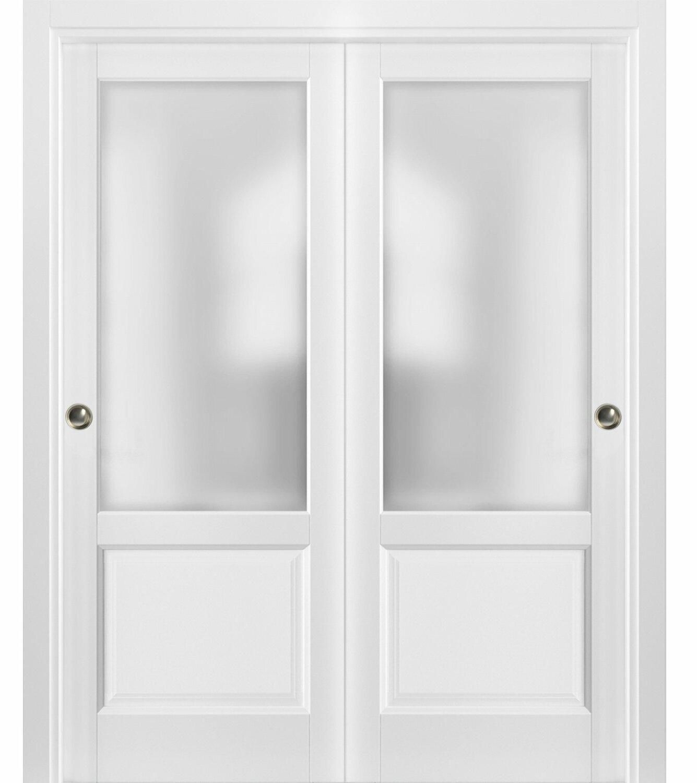 Sartodoors Lucia Glass Sliding Closet Door Wayfair