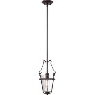 Charlton Home Brilliant 1-Light Urn Pendant