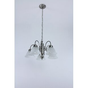 Charlton Home Agustin Fluorescent 5-Light Shaded Chandelier