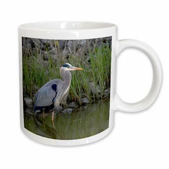 East Urban Home South Padre Island Texas Baltimore Oriole Bird Coffee Mug Wayfair