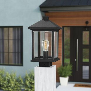 Lovette 1-Light Beveled Glass Lantern Head