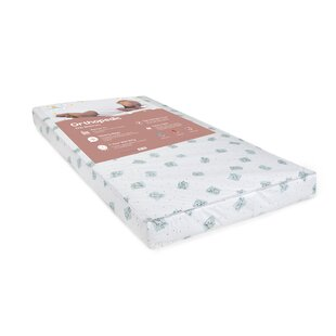 Big Oshi 2-Stage Waterproof Crib and Toddler Mattress
