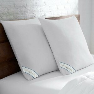 Premium Square Down Alternative European Pillow (Set of 2) by Alwyn Home