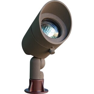 Dabmar Lighting 1-Light Sp..