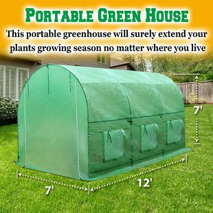 Sunrise Outdoor LTD 7 Ft. W x 12 Ft. D Hobby Greenhouse