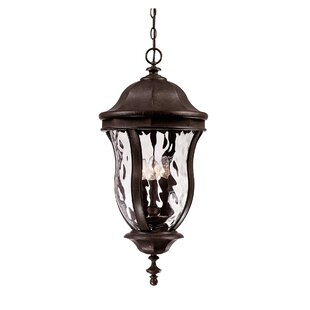 Darby Home Co Coutu 4-Light Outdoor Hanging Lantern
