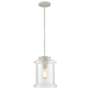 Manervia 1-Light Bell Pendant by Bungalow Rose