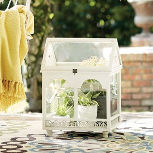 Gullette Terrarium By Design Toscano