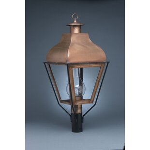 Risborough Chimney Curved Top 1-Light Lantern Head by Darby Home Co