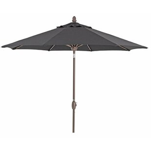 Alcott Hill Ivanka Patio 9' Market Sunbrella Umbrella