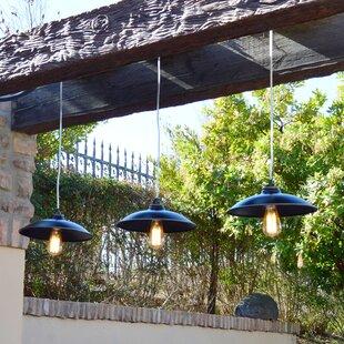 Ebern Designs Cho 1-Light Outdoor Pendant