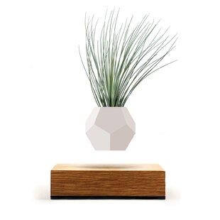 Lyfe Planter Pot By Wooden