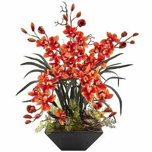 Cymbidium Orchid Arrangement in Vase