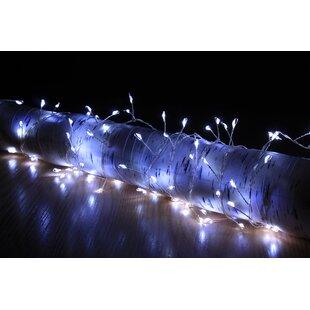 Thiago Fairy Light By The Seasonal Aisle
