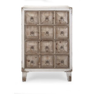 Laurel Foundry Modern Farmhouse Hutsonville Durable 12 Drawer Accent Chest