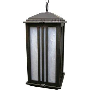Fleckenstein 1-Light Outdoor Hanging Lantern