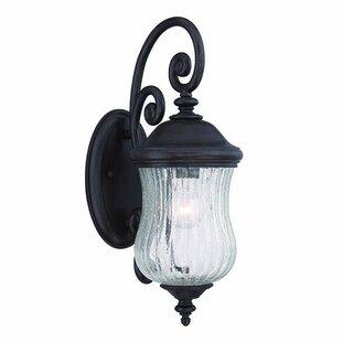 Fleur De Lis Living Berwyck 1-Light Outdoor Wall Lantern