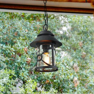 Best Reviews Warkentin 1-Light Outdoor Hanging Lantern By Breakwater Bay