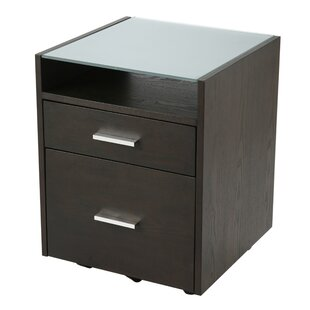 Larkson 2 Drawer Filing Cabinet