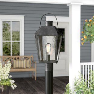 Ellenburg 1-Light Lantern Head