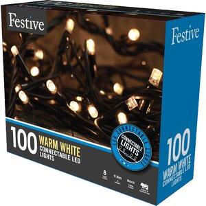 Connectable LED 100 Light String Lighting