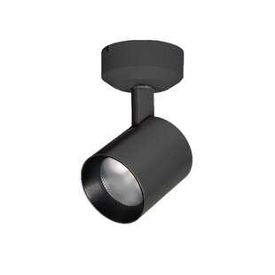 Lucio Outdoor Security Spot Ligh by WAC Lighting