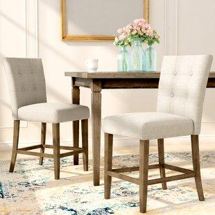 Lark Manor Dejardins Dining Chairs (Set of 2)