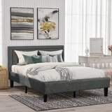 Adetaya Queen Tufted Upholstered Low Profile Sleigh Bed by Latitude Run®