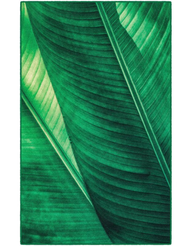 Bay Isle Home Potts Leaf Green Area Rug, Size: Rectangle 76 x 10