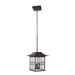 Sanderson 3-Light Outdoor Hanging Lantern by Darby Home Co