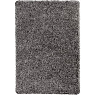 Compare Gareth Hand-Woven Silver Area Rug ByEverly Quinn