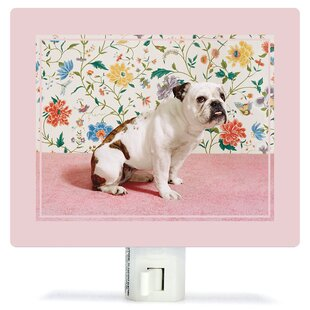 Oopsy Daisy Bulldog by Catherine Ledner Canvas Night Light